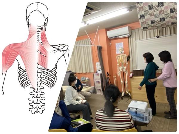姿勢が関わる肩こり&腰痛